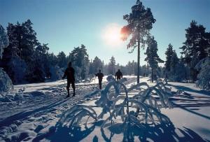 Klimaat in Oslo